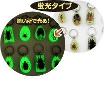 昆虫キーホルダー、ストラップには蛍光タイプもあります。